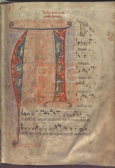 [Antifonario de la misa] [M�sica manuscrita], [S. XIII-XIV]. Fol. 1r