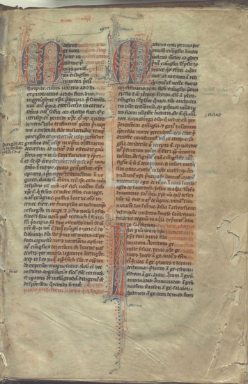 [Novum Testamentum], [S. XIII]. Fol. 1r